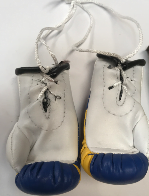 BOSNIA GLOVES